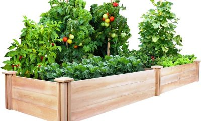 Raised Box Garden DIY Increased Garden Systems You Can Really Construct