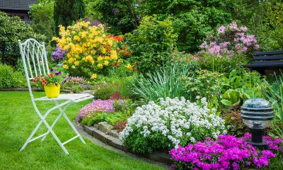 DIY Tips to Landscaping your Garden