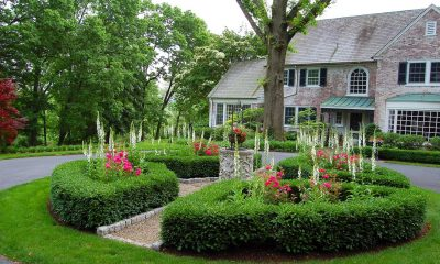 landscaping your front yard