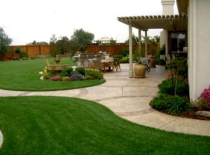 Practical Backyard Landscaping Tips