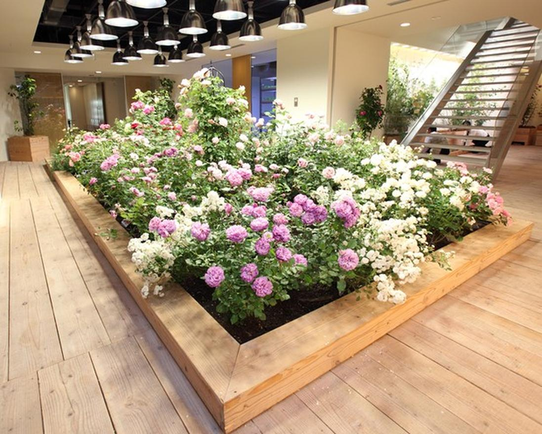 Pasona Group might be one of the largest staffing agencies in Japan, but it also has to have the most biodiversity in any corporate headquarters