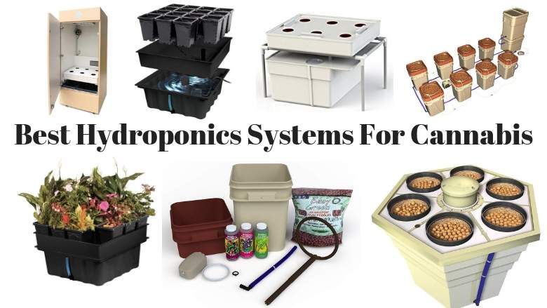 best hydroponics systems